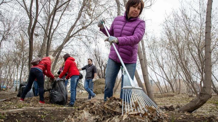 «Решила, что город плохо убран»: Наталья Котова вывела подчиненных четыре дня мести Челябинск