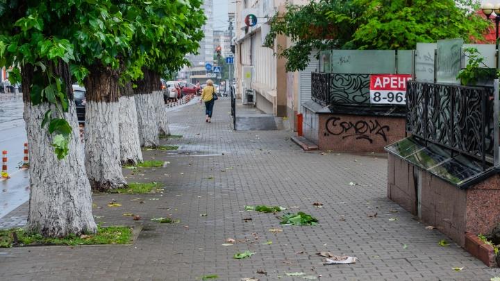 МЧС предупредило об усилении ветра и грозах в Пермском крае