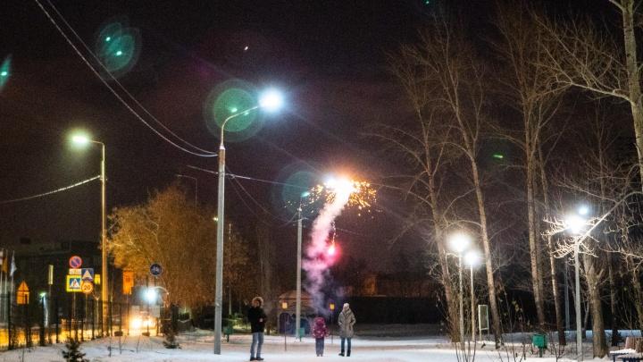 Как отметили Новый год в Советском парке: фоторепортаж NGS55.RU