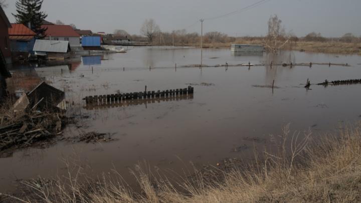 Половодье в Башкирии назвали самым масштабным за последние три года