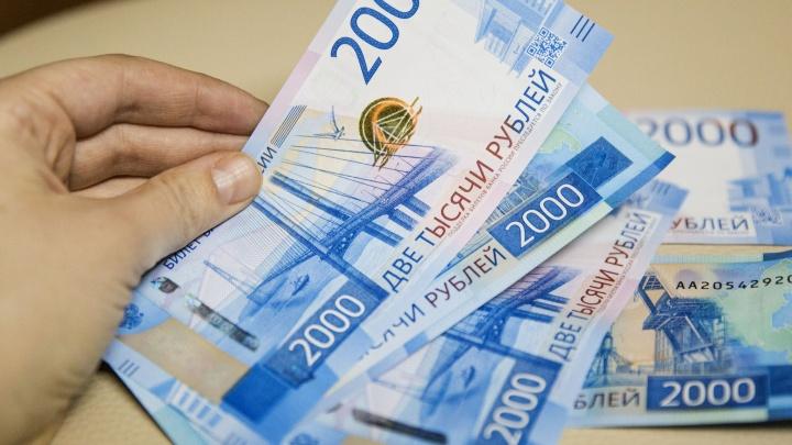 От 40 тысяч в месяц: в каких сферах в Ярославской области можно хорошо зарабатывать