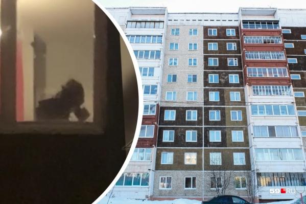 Подросток делал наркотики в съемной квартире в доме на улице Костычева