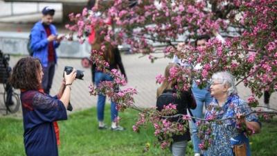 Стал известен предварительный прогноз погоды на майские праздники в Башкирии