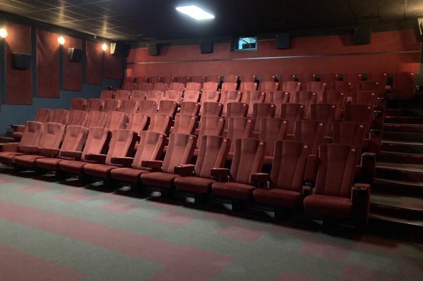 К новому сезону большого кино в NIKALAND основательно подготовились