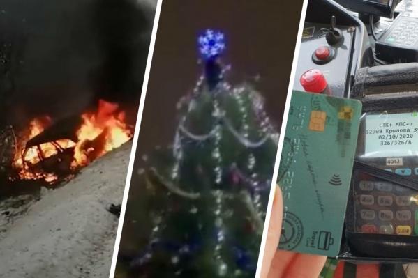 Собрали самые громкие истории новогодних каникул
