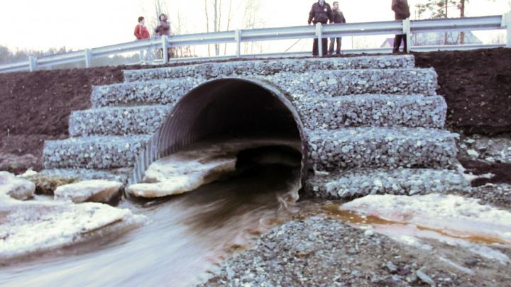 «Ушел под лед, захлебнувшись». Следователи раскрыли подробности гибели семилетнего мальчика на реке под Асбестом