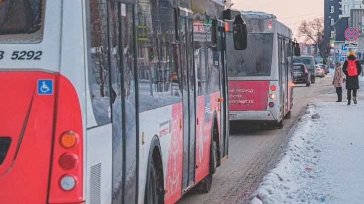 Власти Перми планируют изменить дизайн льготных проездных