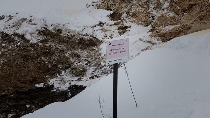 Экологи назвали площадь нефтеразлива под Нижневартовском. Жители опасаются загрязнения озера