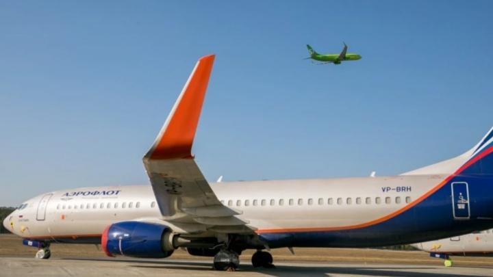 «Пусть на лошадях ездят». Колонка о глупых пассажирах самолетов — почему таких не надо пускать на борт (а вы в их числе?)