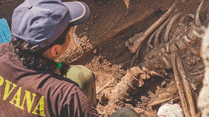 В Перми во время прокладки труб нашли захоронения первых городских чиновников. Выкопают не всех