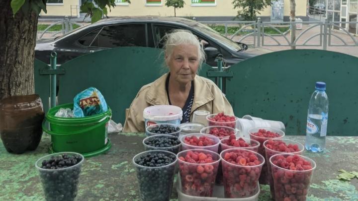 «Бабки к ягодке опять»: почем малина и черника на уличных рынках Екатеринбурга