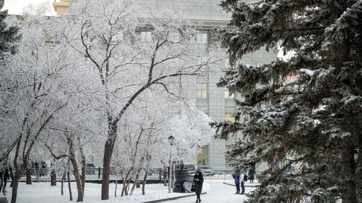 В Новосибирске резко потеплеет до -4 градусов, но поднимется ветер до 17 м/с