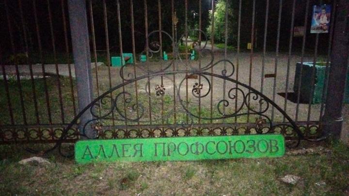 В Парке 300-летия Омска на голову подростку упала металлическая вывеска