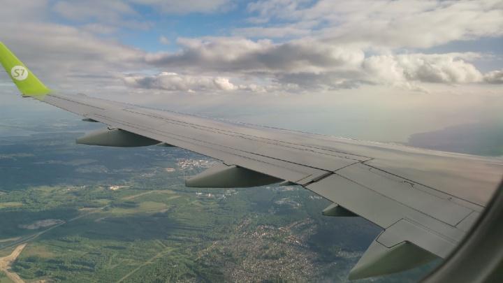 Из Кузбасса можно улететь прямым рейсом на курорты Египта: как часто будут рейсы