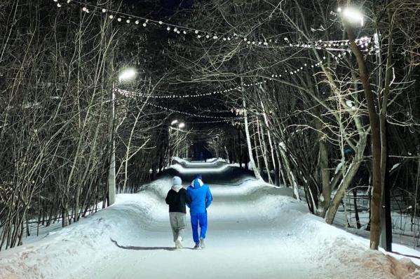 Холодный свет на популярной прогулочной аллее может отпугнуть пешеходов, считает Лев Владов