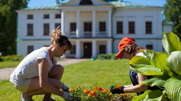 Собрались и поехали: больше ста ярославцев договорились в соцсетях и устроили субботник в «Карабихе»