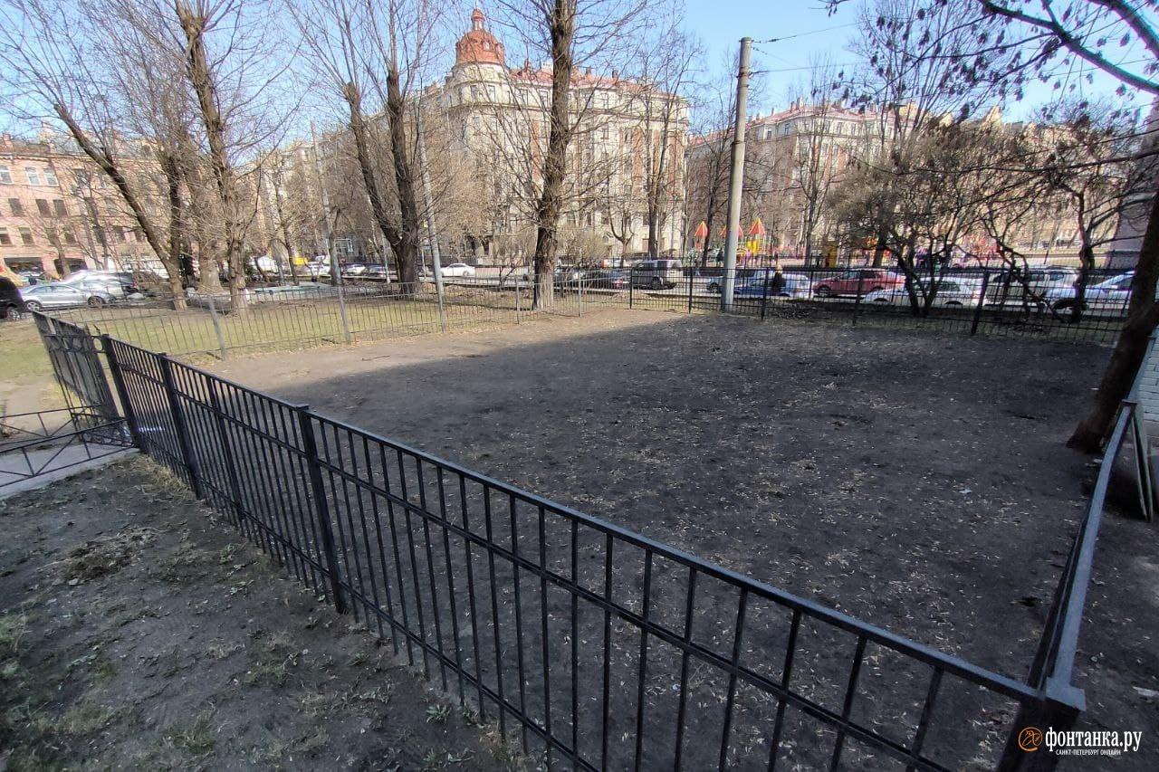 Площадка для выгула на Большой Пушкарской ул., напротив Матвеевского сада<br><br>автор фото Михаил Огнев / «Фонтанка.ру»<br>