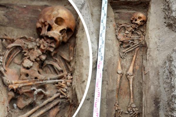 Горбунью нашли при раскопках за «Квантом»
