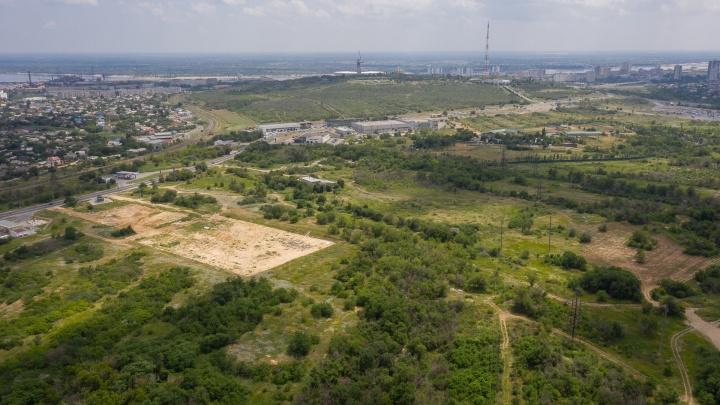 «Прощайте, деревья, скоро вырастет лес новостроек»: волгоградка о желающих застроить склон Мамаева кургана