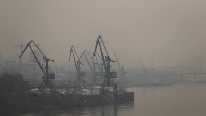 Власти предложили смириться с грязным воздухом в Новосибирске и подождать несколько дней