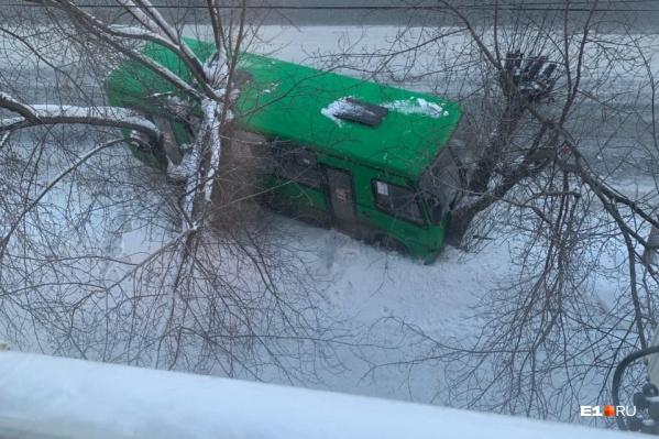 Автобус сначала столкнулся с легковушкой, а потом протаранил дерево