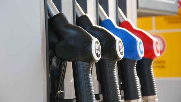 В Кузбассе за две недели выросла цена на бензин: изучаем данные Росстата