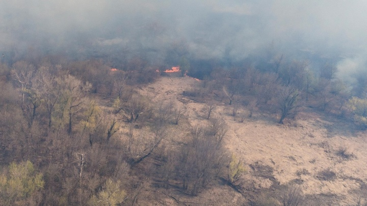 Крупный лесной пожар в Волгоградской области. Объявлена эвакуация жителей