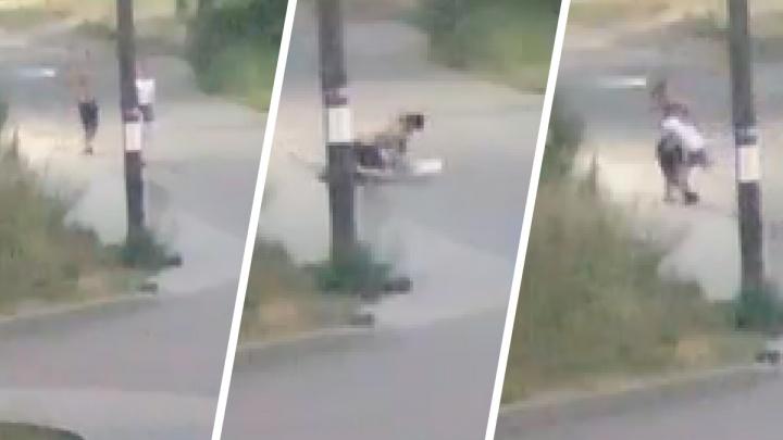«Схватил за горло и потащил»: в Ярославле агрессивный мужчина напал на девушку в подворотне. Видео