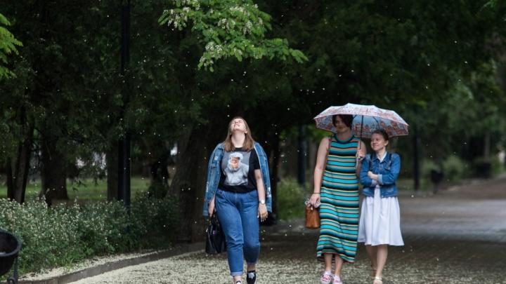 Грозы, град и ливни придут в Ростов в последнюю неделю лета