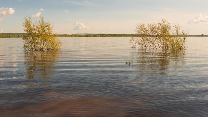 ГИС-центр: в Пермском крае приближается пик половодья