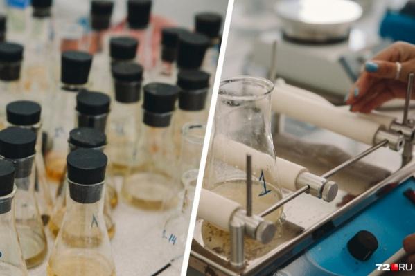 Исследования воды продолжаются, но уже есть первые результаты проверки ее на качество и пригодность для использования в быту