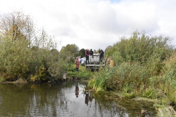 Суксунский пруд для зарыбления выбрали не случайно — в последние годы тут начал появляться ил
