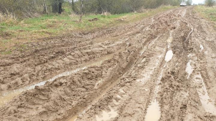 «Нецелесообразно»: в Ярославском районе власти не стали ремонтировать дорогу, превратившуюся в глиняное месиво