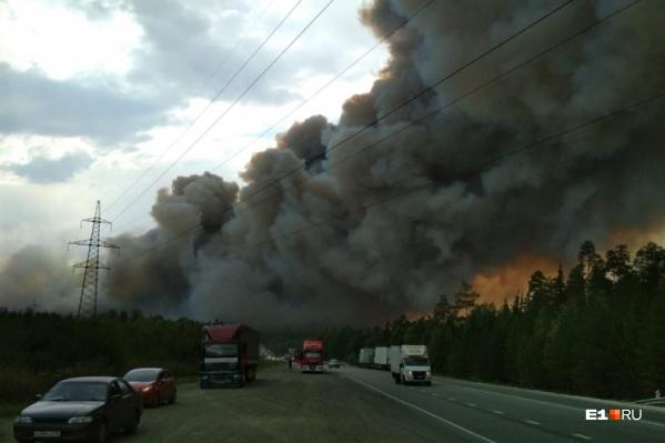 На горе Волчихе крупный пожар, из-за него остановили движение