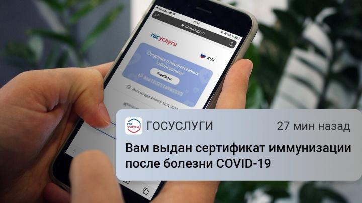 Челябинцы начали получать на «Госуслугах» сертификаты переболевшего COVID-19