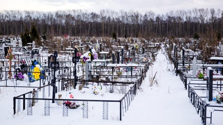 На Осташинском кладбище в Ярославле открыли новый сектор