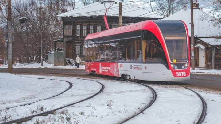 «Львята» на линии: в Перми запустили еще 6 новых трамваев