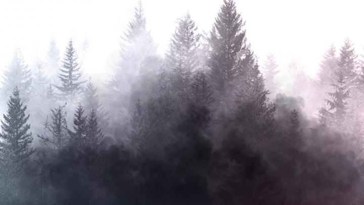 В Красноярском крае активно тушат лесные пожары: дойдет ли смог до Новосибирска и чем он опасен
