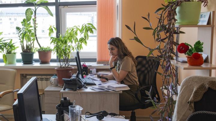 Можно зарабатывать по 70 тысяч: назвали пять самых высокооплачиваемых вакансий сентября в Ярославле