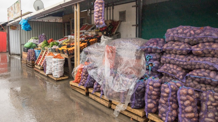 «К Новому году будет по 100 за кило». Почему картошка на юге России дороже, чем в Сибири, и чем обернется ее дефицит