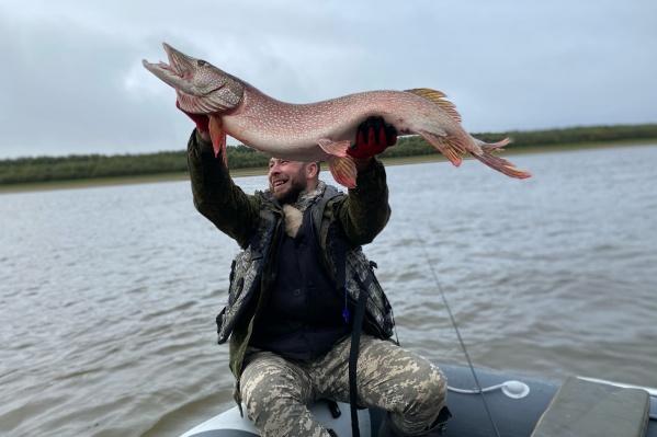 По словам рыбаков, Иртыш порадовал и подарил им рыбу на 9,5 кило. У Евгения Перминева это первый трофей!