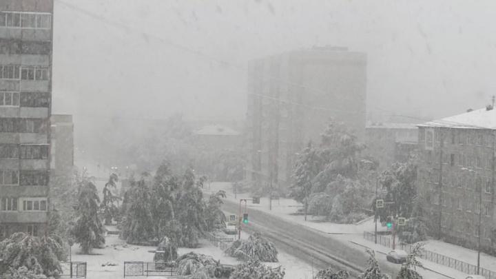 Синоптики дали прогноз погоды на понедельник в Кузбассе. Кажется, зима пришла