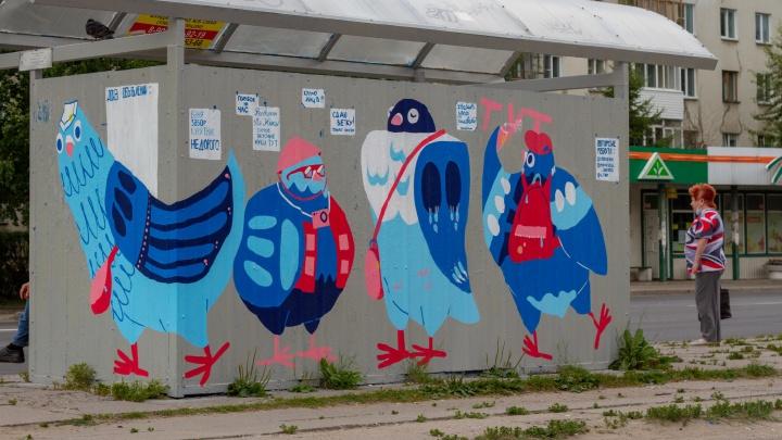 Две художницы из Северодвинска разрисовали остановку смешными голубями. Смотрим на работу в деталях