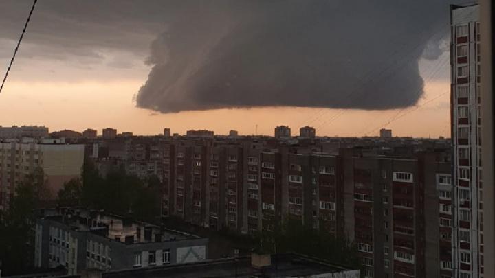 Разрушительный ураган и смертельная авария: что произошло в Ярославской области за выходные. Коротко