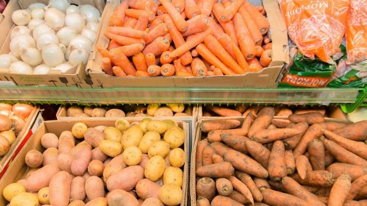 В Самарской области цены на морковь приблизились к 100 рублям