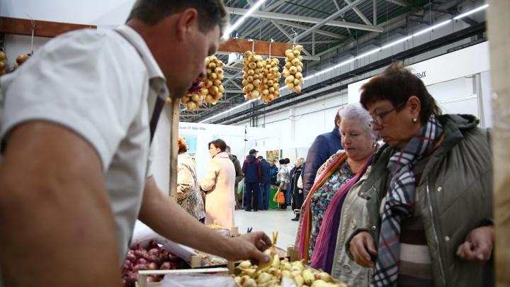 В двух районах Перми откроются сельскохозяйственные ярмарки