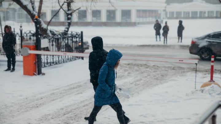 Переживем 35-градусные морозы— ипридет потепление. Погода вТюмени доконца зимы