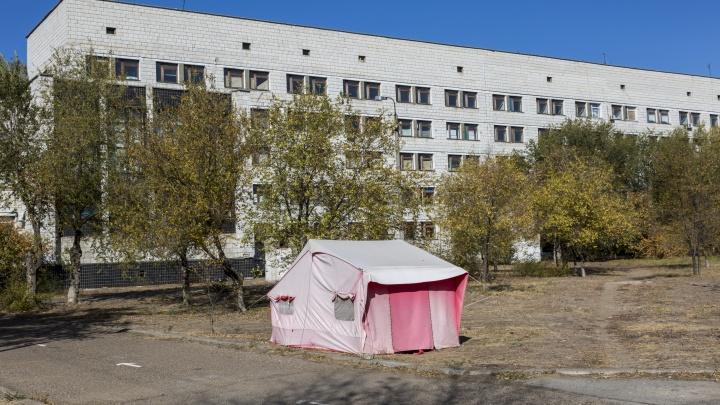 Вернут палатки и развернут новые реанимации: в Волгограде заявили о нанесении 10 ударов по коронавирусу