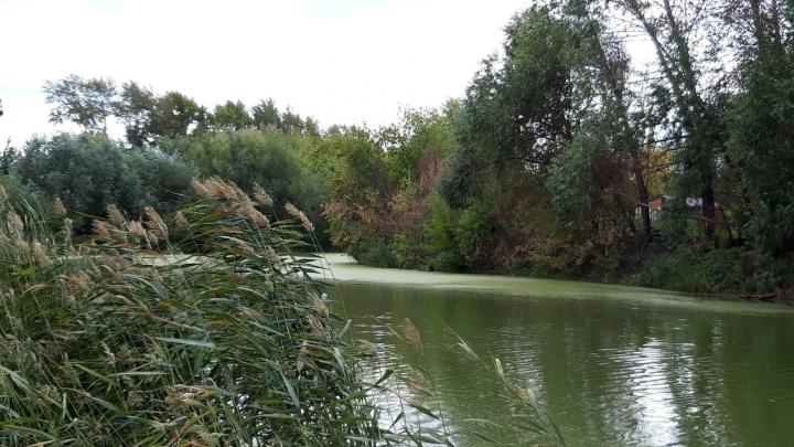 В Кургане очистят русло реки, которую топило фекалиями