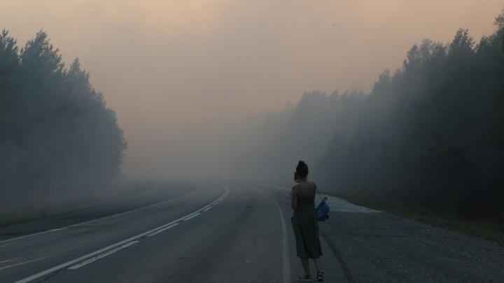 «Рискуем жизнью за зарплату в 30 тысяч». Как тушили огромный лесной пожар под Екатеринбургом